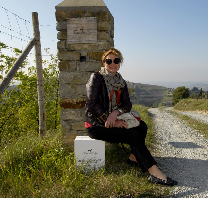 CHEESE TASTING AND WINE EXCURSIONS AND SHOPPING